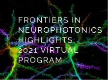 frontiers in neurophotonics highlights 2021